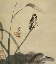 【文缘】一只桀骜的鸟(散文诗)(外一章)