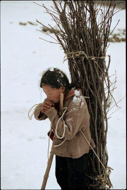[为图提诗]雪皑皑