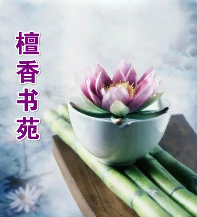 【檀香】命如稻草随风(诗歌)